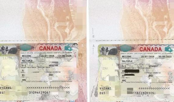 天津拓视海外学生签证+陪读旅签案例-为移民路奠定良好基础